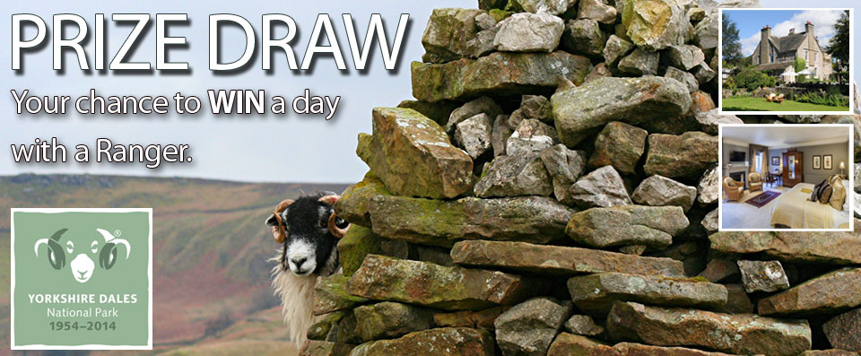 PRIZE DRAW. Your chance to WIN a day with a ranger. Enter NOW.